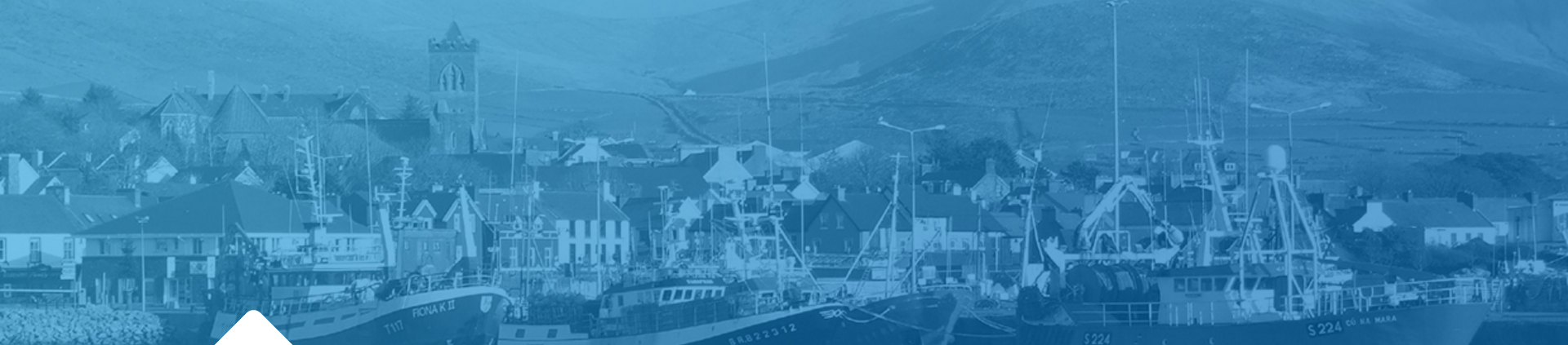 Port of Cork enters Smart Port arena with launch of Net Feasa LPWAN IoT Monitoring & Asset Tracking Solution